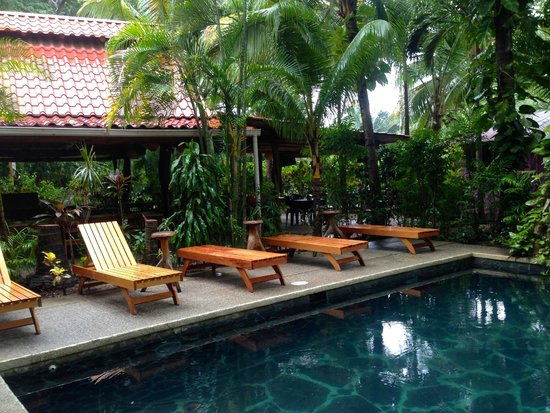 KayaSol Surf Hotel: lounging by the pool