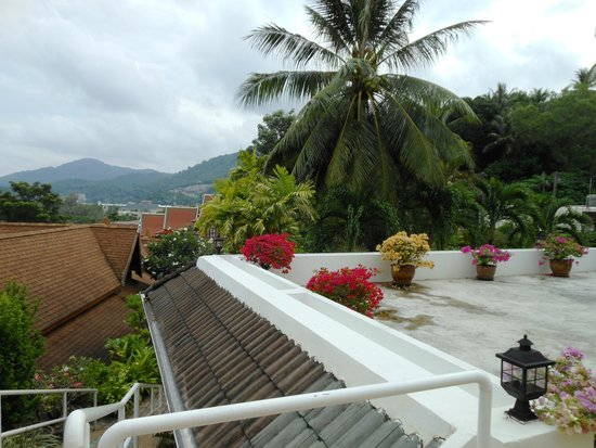 Orchidacea Resort: Территория отеля