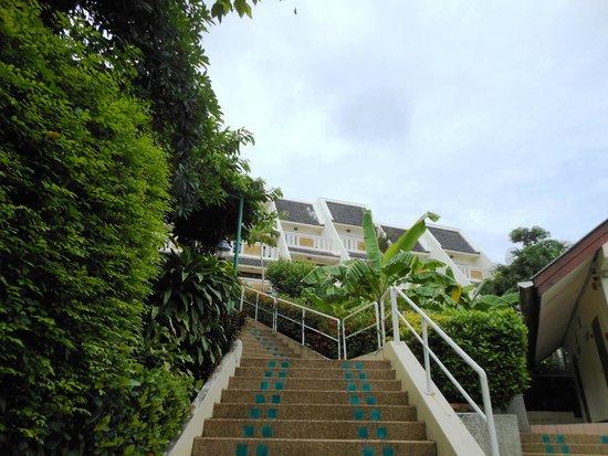 Orchidacea Resort: Длииииинная лестница)