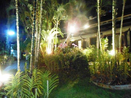 Orchidacea Resort: Вечером