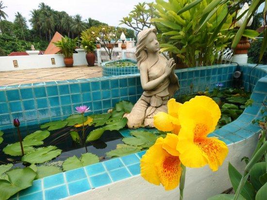 Orchidacea Resort: Возле ресепшна