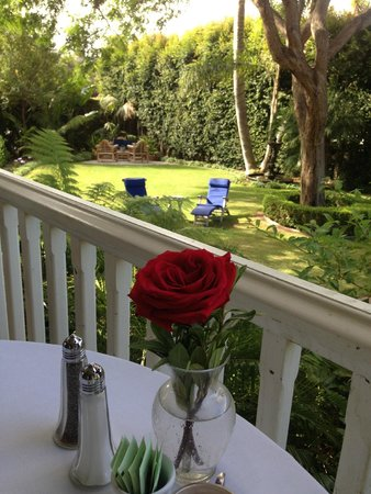 Simpson House Inn : A garden view from the  dining table in the balcony