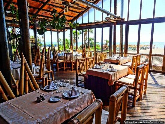 Hotel Tropicana: Beach Club