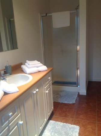 All Seasons B&B: Our large bathroom with shower.