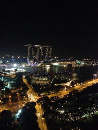 Swissotel The Stamford Singapore: Night view again