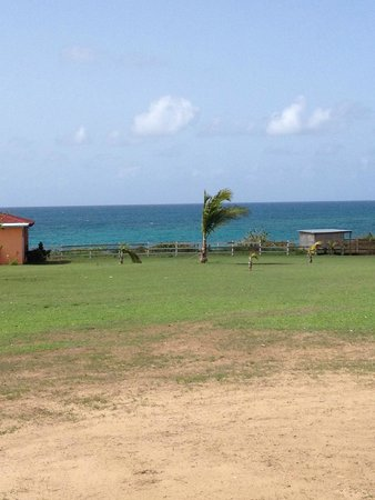 Hector's by the Sea: View of the ocean from the grounds