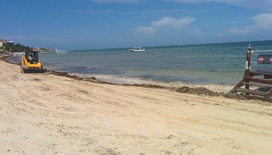 Azul Beach Resort Sensatori Mexico : clean up time