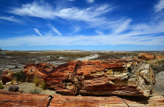 Painted Desert : Crazy geology here