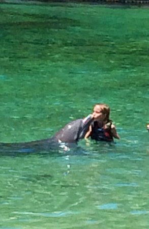 Dolphin Quest: Kissing a dolphin