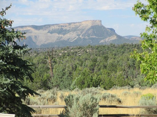 Flagstone Meadows Ranch Bed and Breakfast: View of Mesa Verde from Flagstone Meadows
