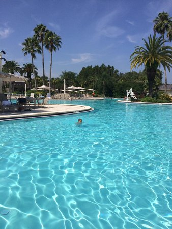 Saddlebrook Resort Tampa: Beautiful pool area. Our favorite place in the whole resort