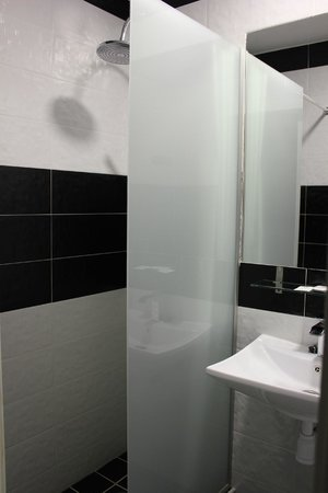 Hostal Atelier : Small bathroom but good shower in the green room