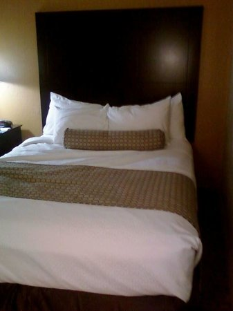 Comfort Inn Plant City - Lakeland: Bed
