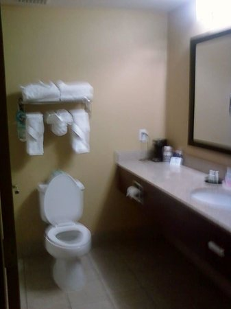 Comfort Inn Plant City - Lakeland: Bathroom