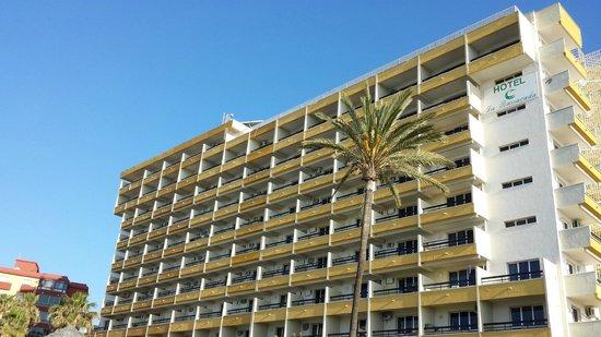 Hotel La Barracuda: vistas del hotel tumbada tomando el sol