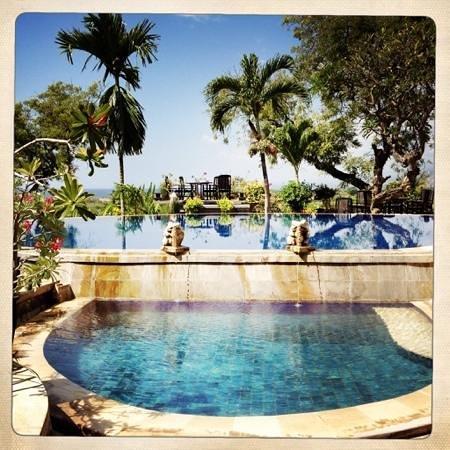 Zen Resort Bali: Poolblick