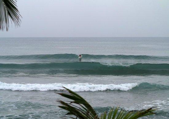 Casa Islena Inn: Surfer