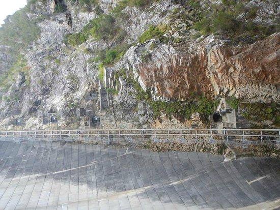 Aardvark Adventures: The dredded ladders
