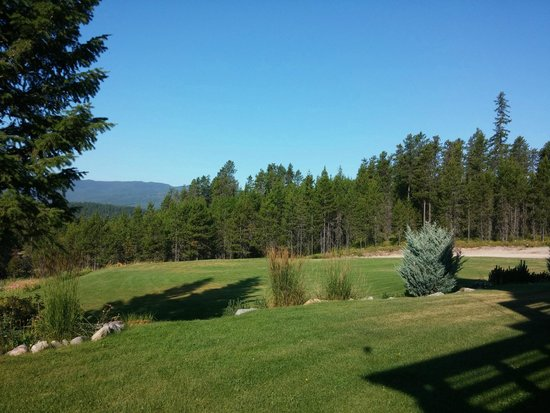 The Great Bear Inn : morning view from our patio