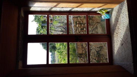 Rectoral de Anllo: Vista al viñedo propio