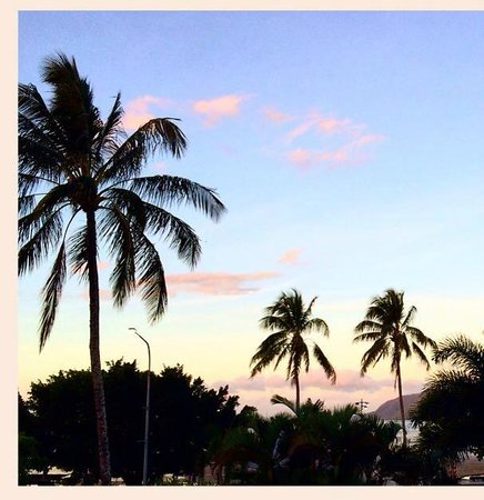 DoubleTree by Hilton Hotel Cairns: Lovely view from my balcony on 2nd floor