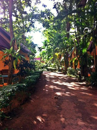 Lanta Pavilion Resort : Path to bungalows