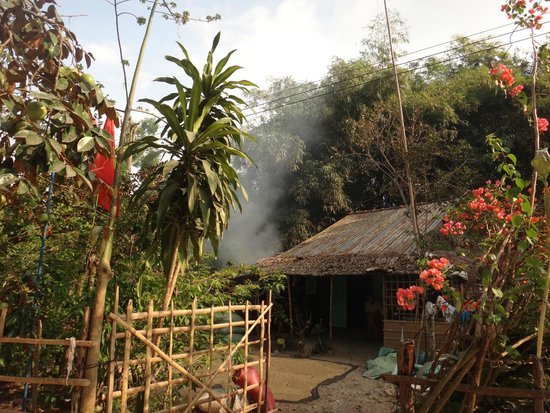 EcoTours - Private Day Tours : Jungle Home
