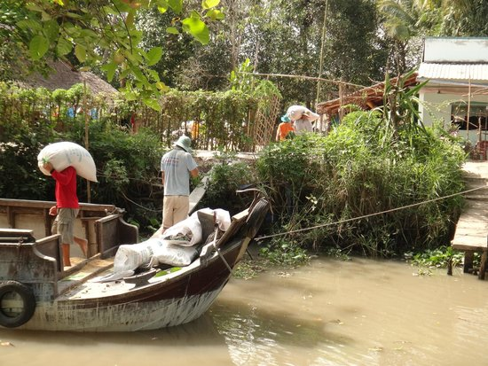 EcoTours - Private Day Tours : Loading the Rice