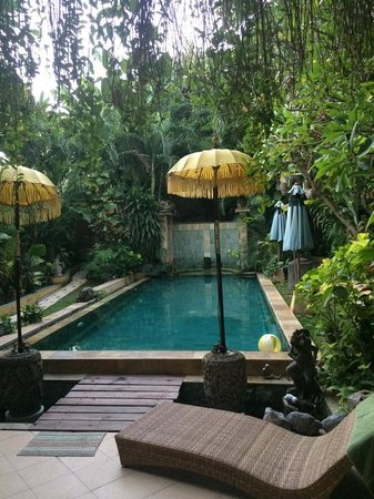 Green Chaka Villas: Pool at Eden villa
