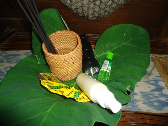 Bambu Indah : room amenities...insect repellent, medicine, torch, incense sticks