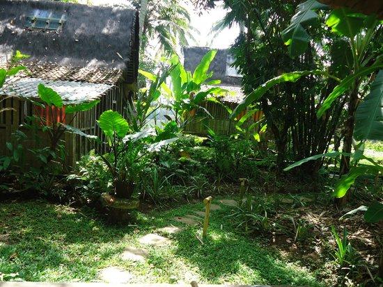 Bambu Indah : view from kuda house