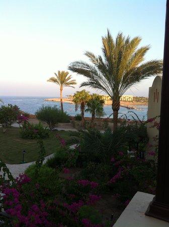 Steigenberger Coraya Beach : Blick vom Zimmer