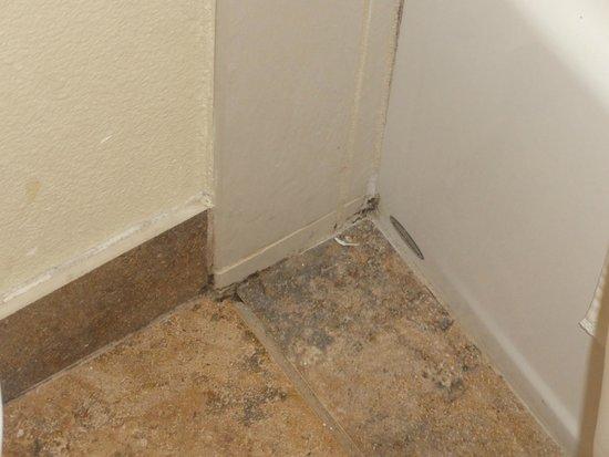 Days Inn San Diego Hotel Circle Near SeaWorld: Hair and dirt in corner of bathroom