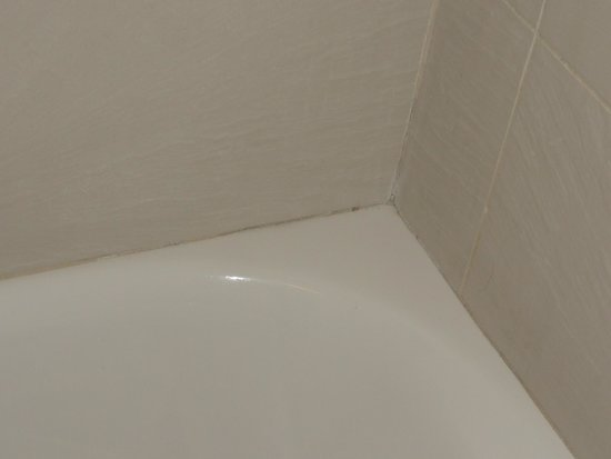 Days Inn San Diego Hotel Circle Near SeaWorld: Mold in adjacent corner of shower
