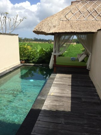 Alam Puisi Villa: Piscine privative dans chaque villa avec vue sur rizière.