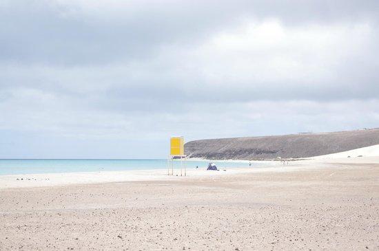 Playa de Sotavento (Playa Risco del Paso y Playa Barca): jandia playa