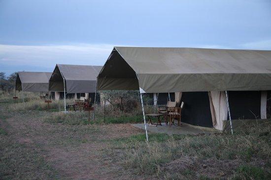 Serengeti Savannah Camps : The tents