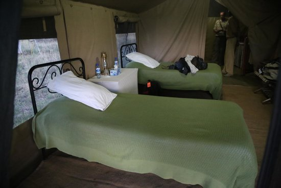 Serengeti Savannah Camps: Our beds inside the tent...really comfortable