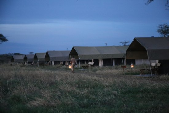Serengeti Savannah Camps: The tents from outside