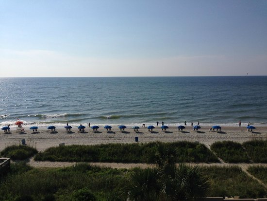 Hampton Inn & Suites Myrtle Beach/Oceanfront: The view, The view