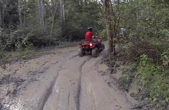 Down and Dirty Quad Bike Tours : 1