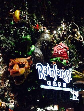 Rainforest Cafe Menu San Antonio Texas