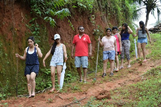 The Lalit Resort & Spa Bekal: Forest Walk