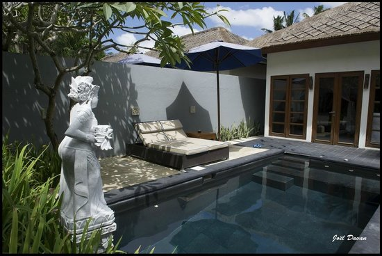 Balibaliku Beach Front Luxury Private Pool Villa: Vue de la piscine, jardin
