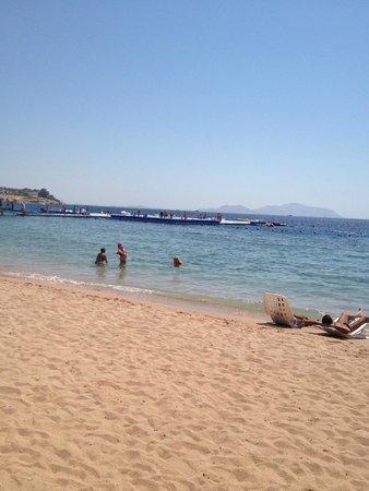 Domina Coral Bay Oasis: spiaggia