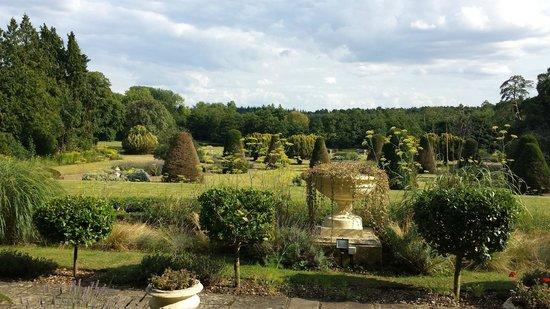 Lynford Hall: Garden