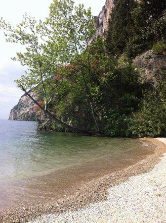 B&B Torre degli Ulivi : Spiaggia torre degli ulivi