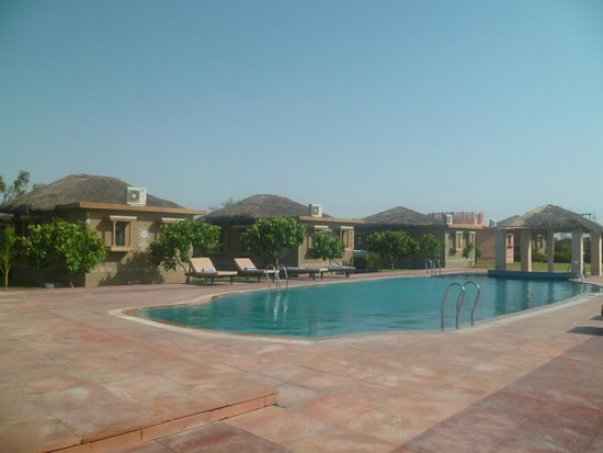 Thar Oasis Resort & Camp: Piscine