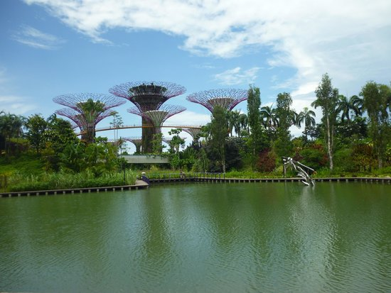 Gardens by the Bay: Garden by the Bay