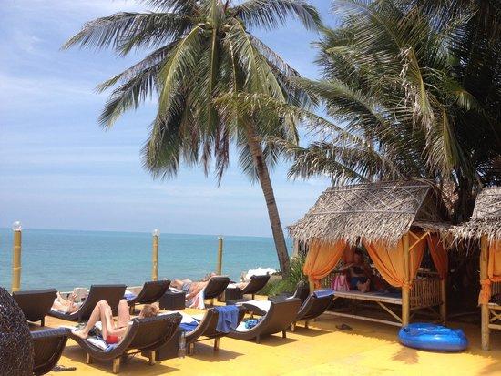 Samui Beach Resort: Liegen und Cabanas am Pool